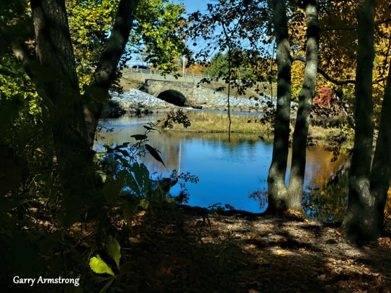 180-River-Autumn-Leaves-GAR-10132019_212
