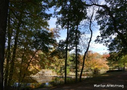 180-River-Canal-Autumn-Leaves-MAR-10132019_007