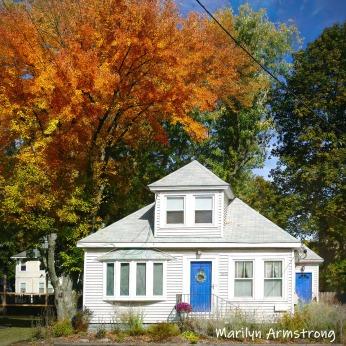 180-Square-Line-Autumn-Leaves-MAR-10132019_009