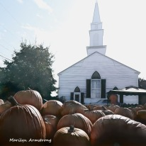 180-Square-Pumpkins-on-the-Cape-20131017_165