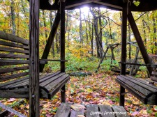 180-Woods-Through-Glider-GAR-20191017_357