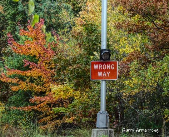 180-Wrong-Way-Sign-GAR-20191016_116