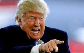 impeach - crazy photo