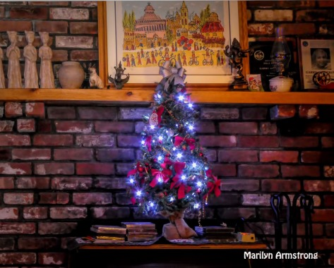 180-Christmas-2019-20191207_007