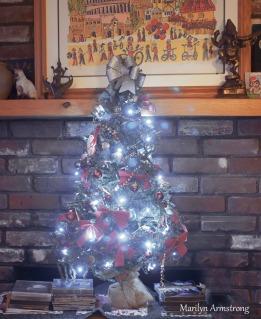 300-christmas-tree-12-10-20191209_102