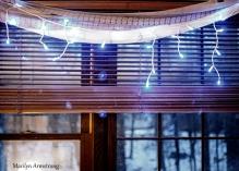 300-lighted-window-christmas-tree-12-10-20191209_107