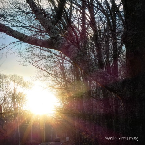 180-Square-Coming-Home-Sunset-Aldrich-St-210117_06