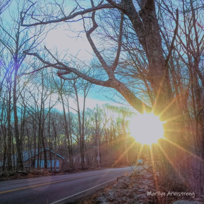 180-Square-Coming-Home-Sunset-Aldrich-St-210117_14