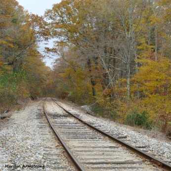 180-Square-Tracks-Autumn-Chestnut-St-MAR-01112018_042