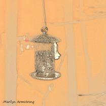 180-BW-Flying-Squirrels_03252020_007