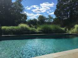 View from pool to pond