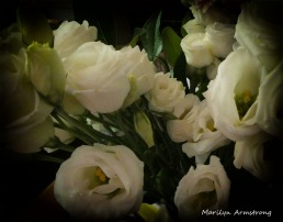 180-Bouquet-white-roses_060420_003