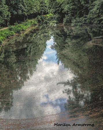 300-pollen-canal_mar-061920_011