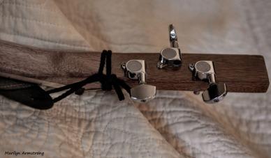 300-back-neck-frets-tuning-cbg_071820_016
