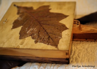 300-oak-leaf-back-cbg_071820_018