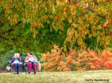 180-Friends-Foliage-GAR_092420_185