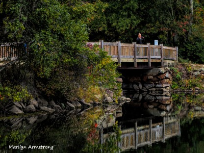 300-river-bend-early-foliage-mar_092420_026