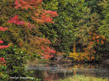 300-river-bend-early-foliage-mar_092420_079