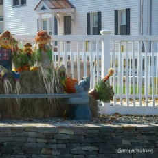 180-Square-Halloween-Gar-Downtown_102320_013