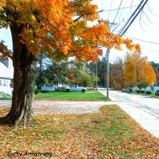 180-Square-Sugar-Maple-Gar-Downtown_102320_006