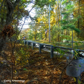 180-Square-Truck-Coming-Garry-10-19-Foliage_101920_020