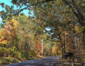 180-Up-the-Road-October-Foliage_101920_124
