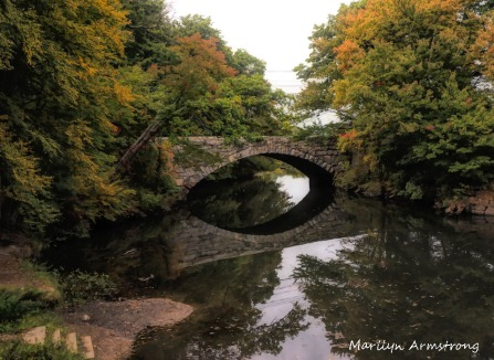 300-bridge-early-foliage-mar_092420_076