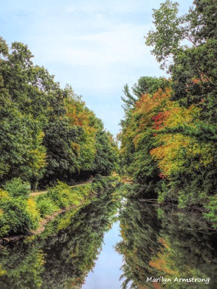300-canal-foliage-mar_092420_097