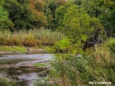 180-Gar-Fall-River-Bend_092420_0176