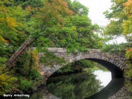 180-Stone-Bridge-Gar-Fall-River-Bend_092420_0112