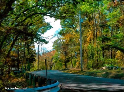 180B-Golden-October-Foliage_101920_179