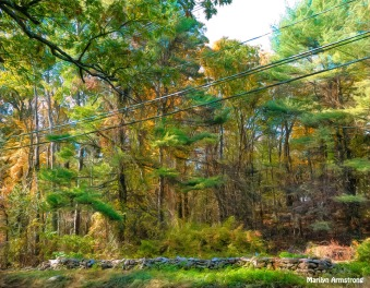 180B-Golden-Rock-French-October-Foliage_101920_178