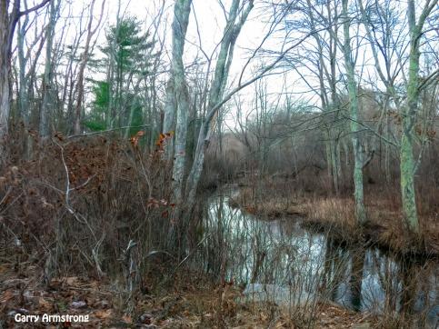 180-Wandering-River-Blackstone-RI-GAR_121120_0030