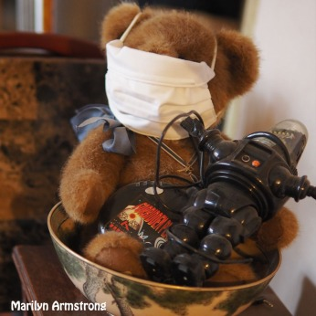 300-square-masked-teddy-robbie_120220_0022