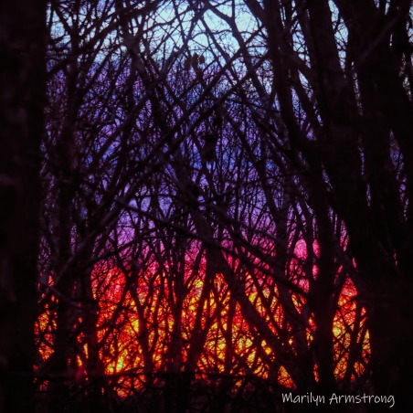Sunrise like a fire in the sky