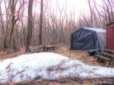 180-Backyard-Warm-Day-in-March-GAR_031121_014