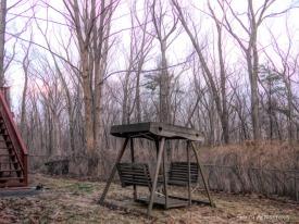 180-Backyard-Warm-Day-in-March-GAR_031121_015