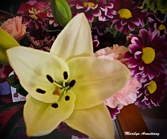 Arty bouquet with open lily