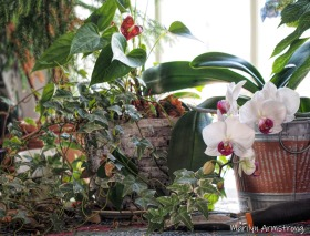 300-all-flowers__041321_126