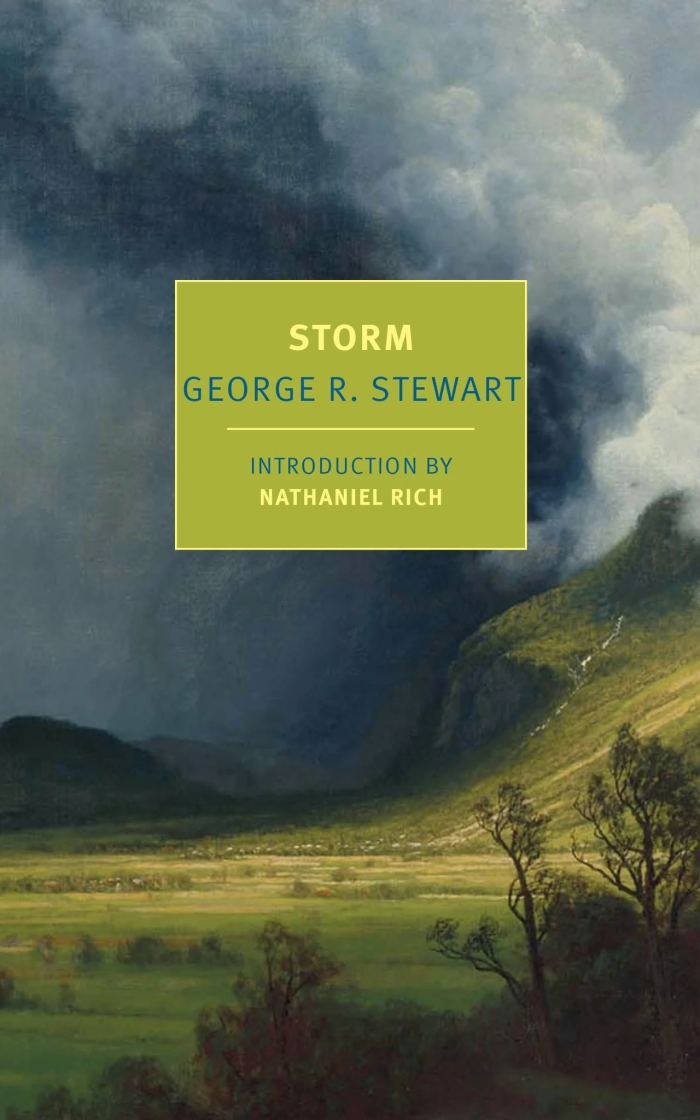 stewart.1-2021 STORM cover